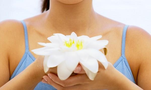 image for Lotus Wellness & Beauty