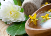 image for Golden Lotus Healing & Wellness